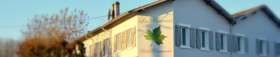 Hôtel Restaurant Les Platanes, hébergement, hotel à Aire sur l'Adour